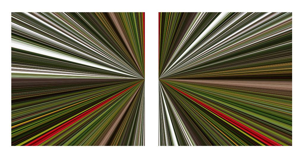 'Stanley Park Palette Diptych'